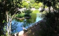 Yoga al parco di Monte Urpinu - Cagliari - 2 Settembre 2015